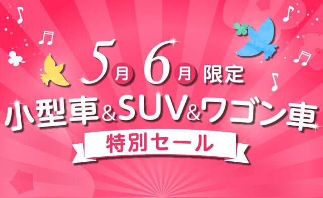 5月6月限定 ! 小型車&SUV&ワゴン車特別セール